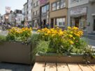 Project LOV in Onze-Lieve-Vrouwestraat Mechelen